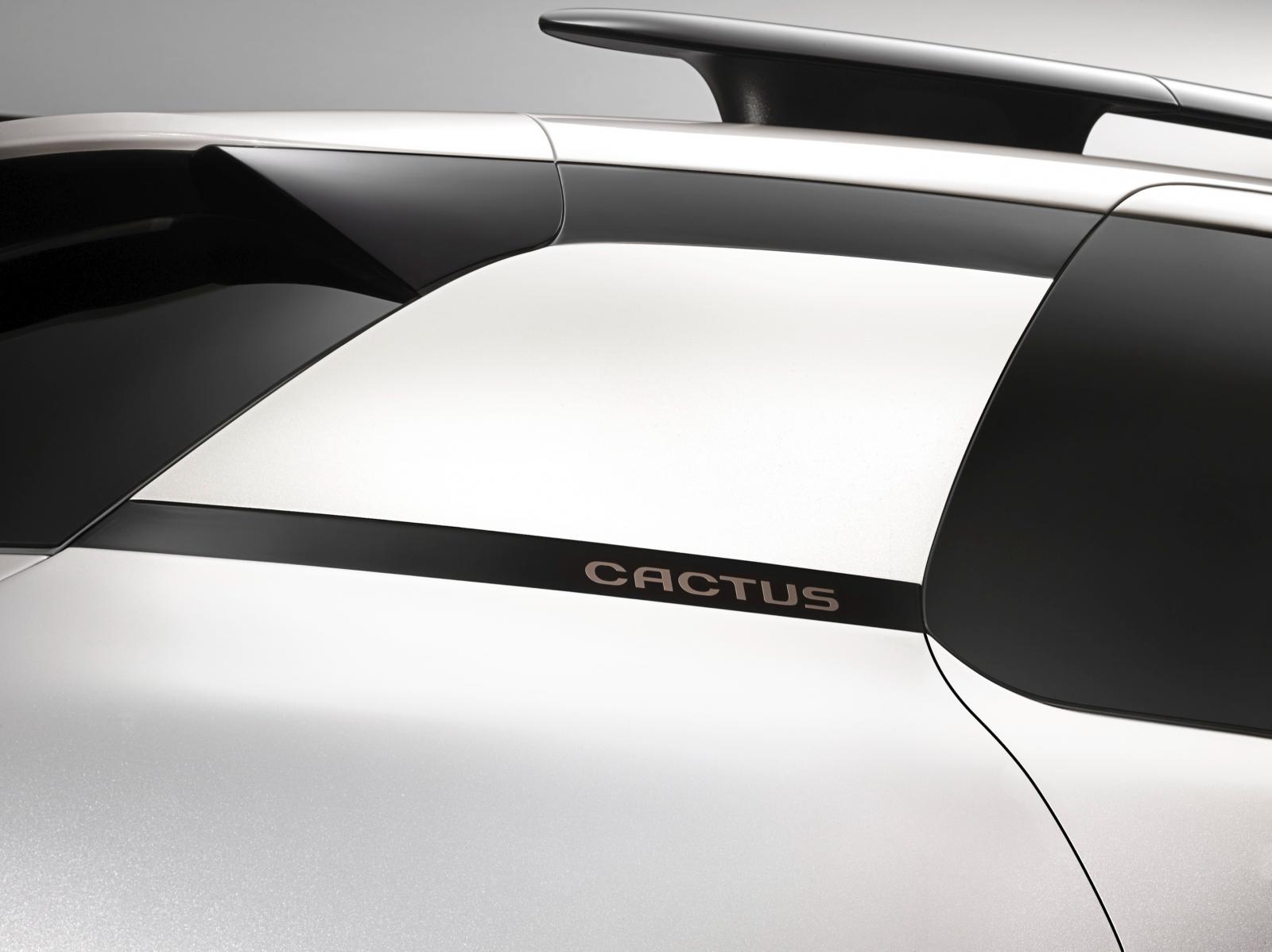 C4 Cactus Shine edition 2014 logo de custode