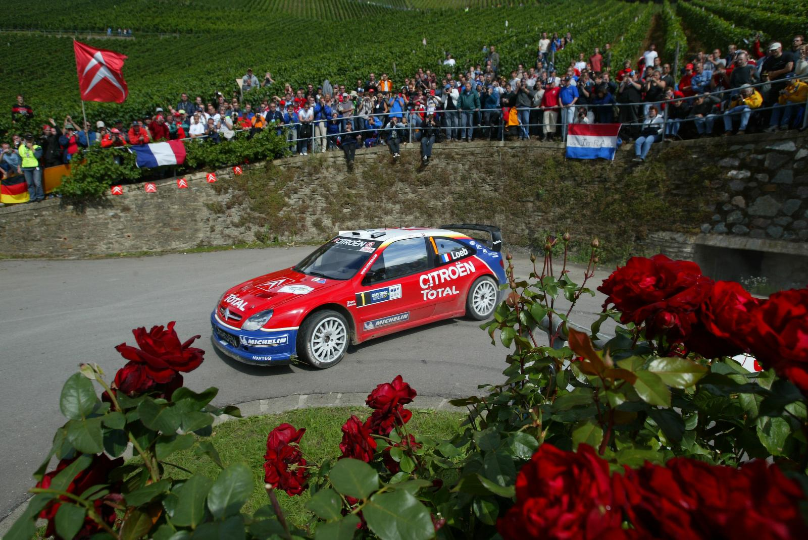 Xsara WRC 2005